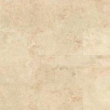 Cappuccino Polished Marble 12x24 Tile