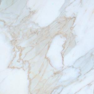 Calacatta Oro 12x12x3/8 Polished Extra Marble Tile