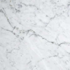 Bianco Carrara 18x18 Honed Marble TIle