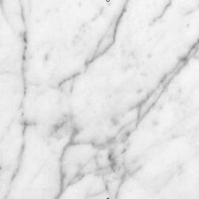 Bianco Carrara 24x24 Honed Marble TIle